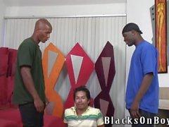 Gli uomini neri che condividono un bellimbusto sud- americana