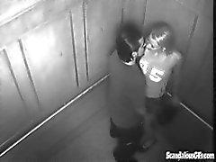 Wilder Sex im Fahrstuhl Ruft Webcam gefangen