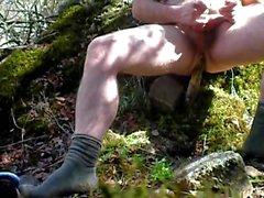 Ormanda yürüyün