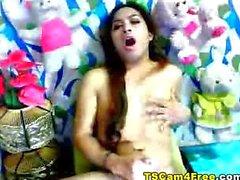 Asian ladyboy cock stroke
