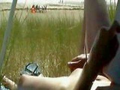 theSandfly Swingin ' пляжа шалости!