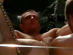 Muscleboy fisted