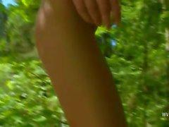 Petite danish civciv bir ormanda işeyen