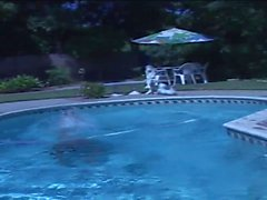 Lusty brunette saugt Hunk Hahn in den Pool