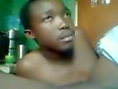 africano il numero cespuglio