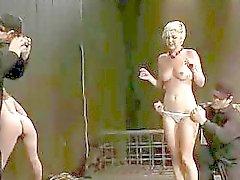 Frans meisje gebonden en dubbel gepenetreerd