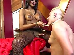 Gorgeous Shemale Dominates Slave