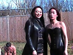Asian dominas humiliate their sissified sub