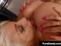 Puma Swede Sucks & Licks Balls & StuntCock scopa DD Ventura!